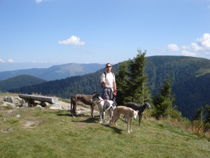 Walking in the Vosges