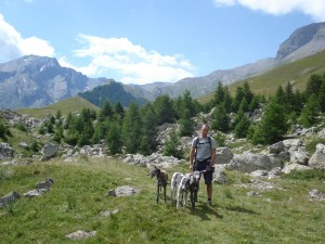 Walking at the Col de Vars with the dogs